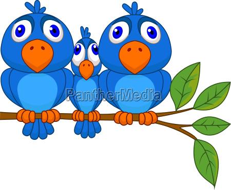 lustige blaue vogel cartoon