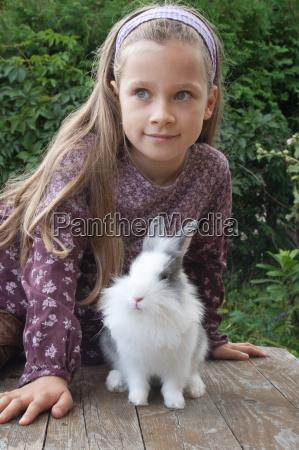 tier haustier tiere haustiere kuscheltier kaninchen