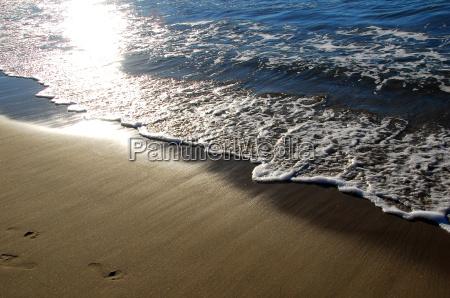 sea beach waves