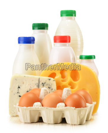 composition with variety of dairy products