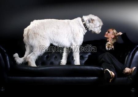 young woman irish wolfhound on