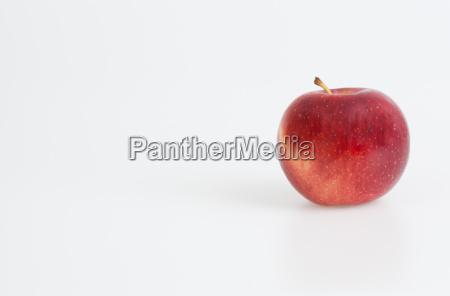 essen nahrungsmittel lebensmittel nahrung objekt gesundheit