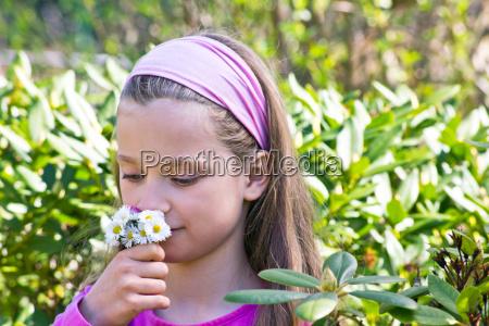 blatt baumblatt garten blume pflanze bluete