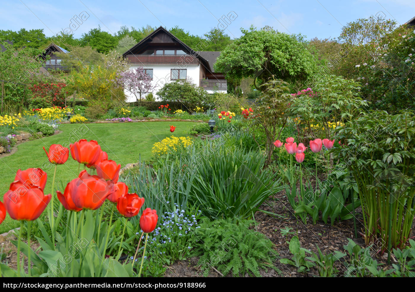 Schöner Garten im Frühling - Stock Photo - #9188966 - Bildagentur ...