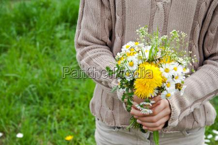 pick garden flower plant green brown