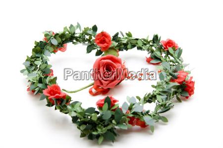rose mit rosengirlande