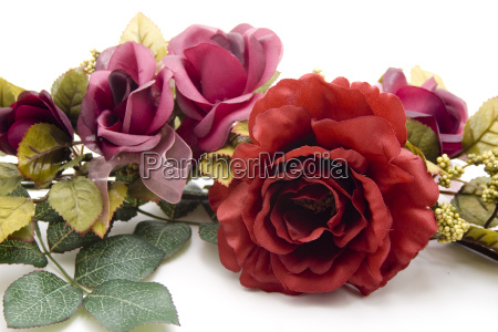 rote rose mit girlande