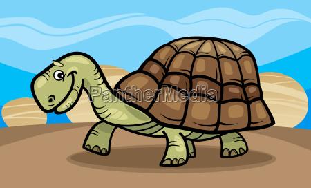 funny turtle cartoon illustration