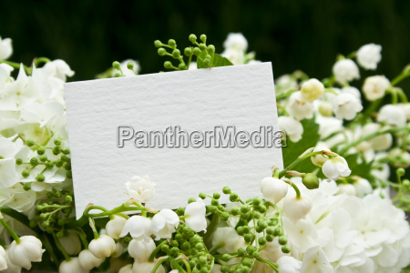 card background paper valentines day card