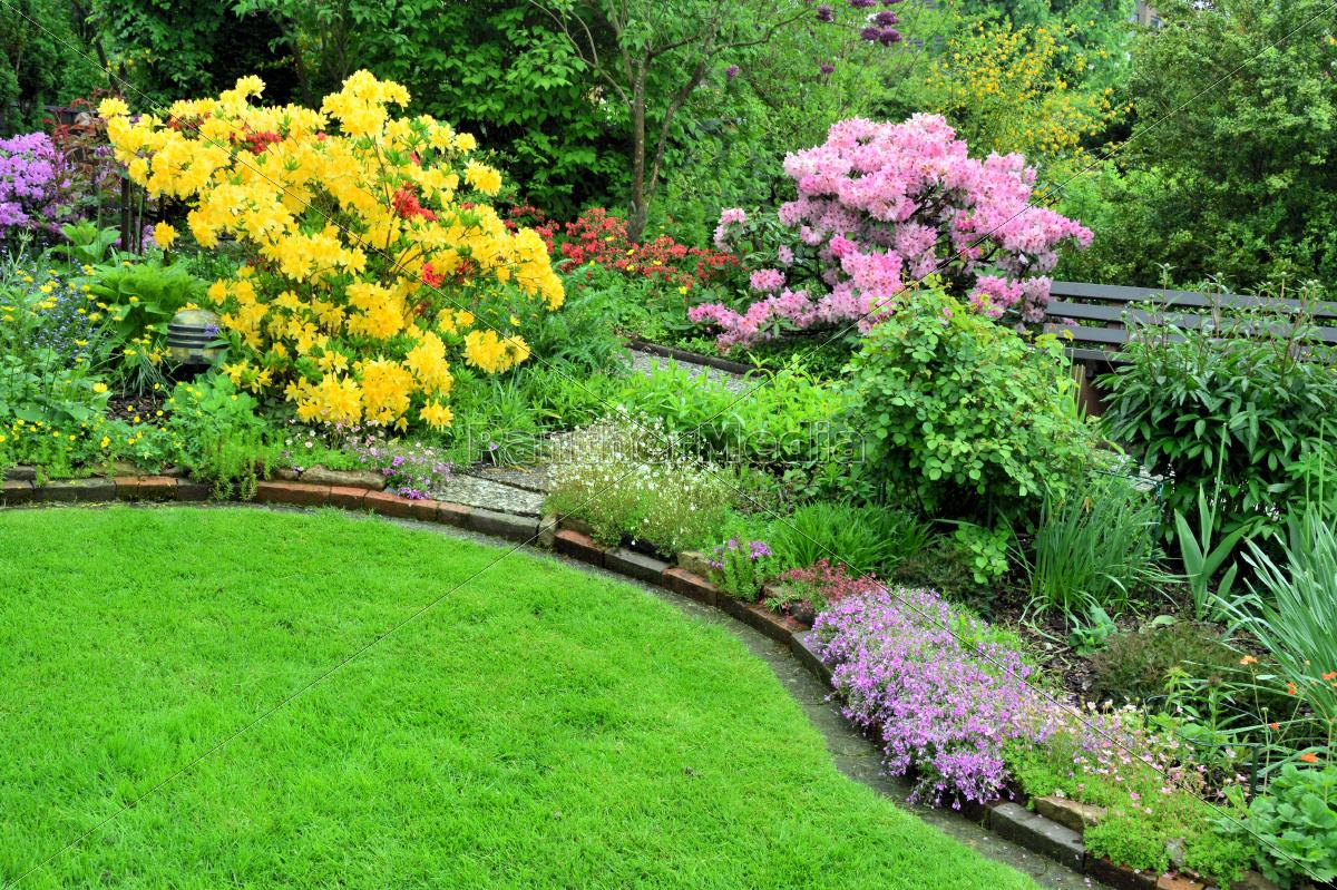 Azalee und rhododendron im garten stockfoto 9349482 for Gartengestaltung rhododendron