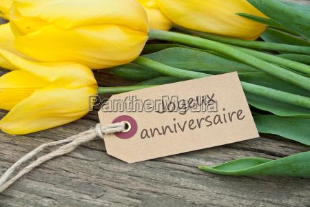 tulips congratulate congratulations all the best