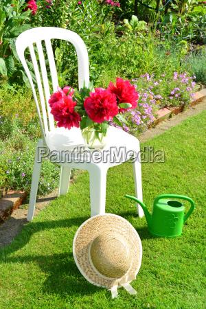 chair in a summer garden