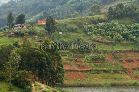 hillside farming community