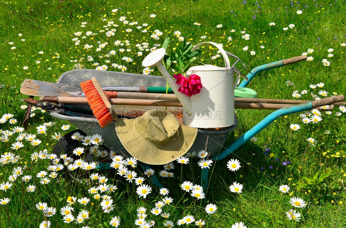 Garten Werkzeug Blumenwiese Lizenzfreies Foto 9560436