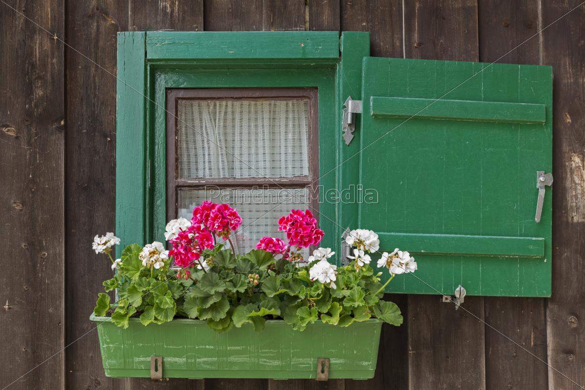 kleines fenster an einer bergh tte mit geranien stock. Black Bedroom Furniture Sets. Home Design Ideas