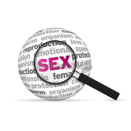 gefuehle emotionen erotisch biologie sexuell liebhaben