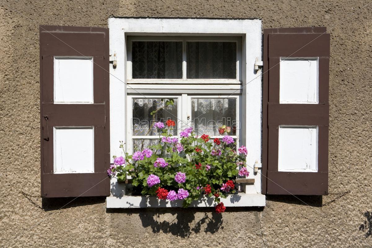 Stock Bild 9615334 - Fenster mit bunten Fensterläden und Geranien im  Blumenkasten