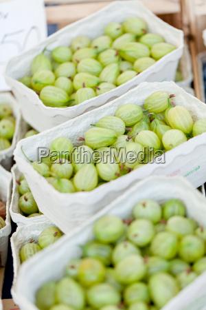 fresh healthy gooseberries macro