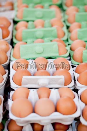 frische braune huehner eier im karton