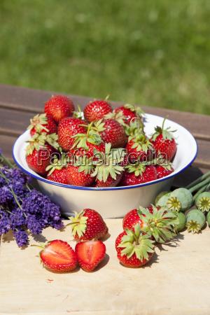 erdbeeren lavendel und mohn im sommer