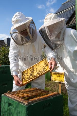zwei bienenzuechter die bienenstock behalten