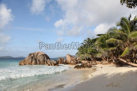 africa beach seaside the beach seashore
