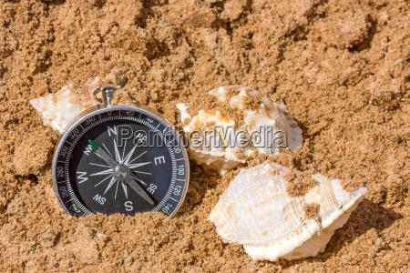 compass and seashells