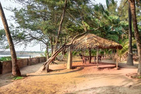palm tree garden hut arabian sea