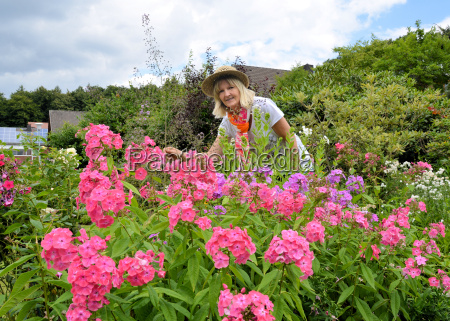 woman with phlox in the garden