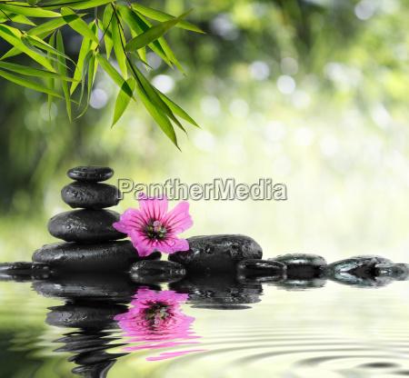schwarzen stein und hibiskus mit bambus