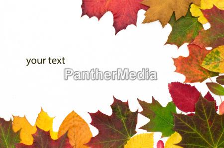 herbstlich your text