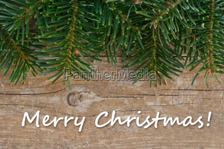 christmas merry christmas christmas card fir