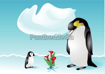 pinguine und blumen