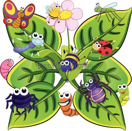 insekten auf den blaettern