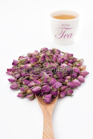 tee blume pflanze gewaechs rose diaet