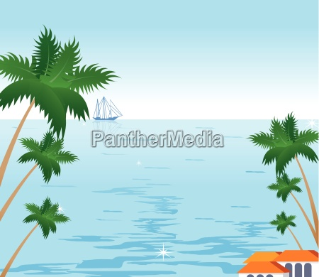coconut palm tree and sailboat on