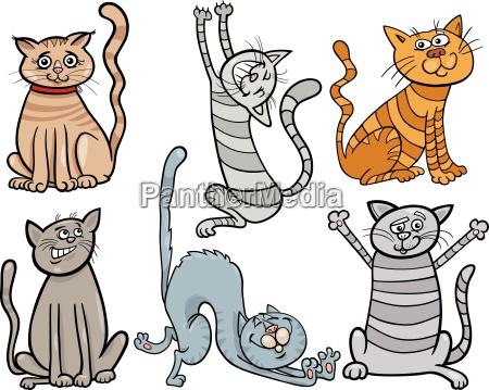 funny cats gesetzt cartoon abbildung