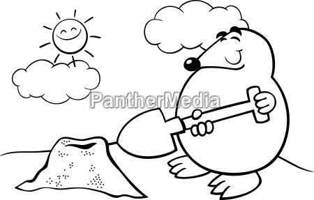 maulwurf, cartoon, illustration, färbung, seite - 10085852