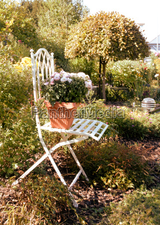 chair with flower in the autumnal