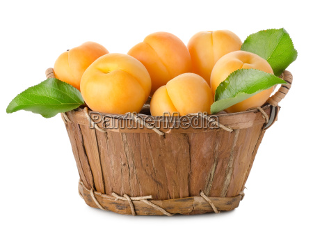 aprikosen, in, einem, korb, isoliert - 10122745