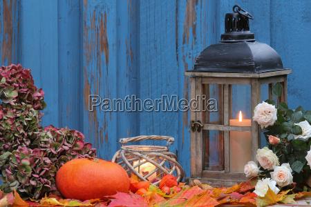 pumpkin and hydrangea windlights