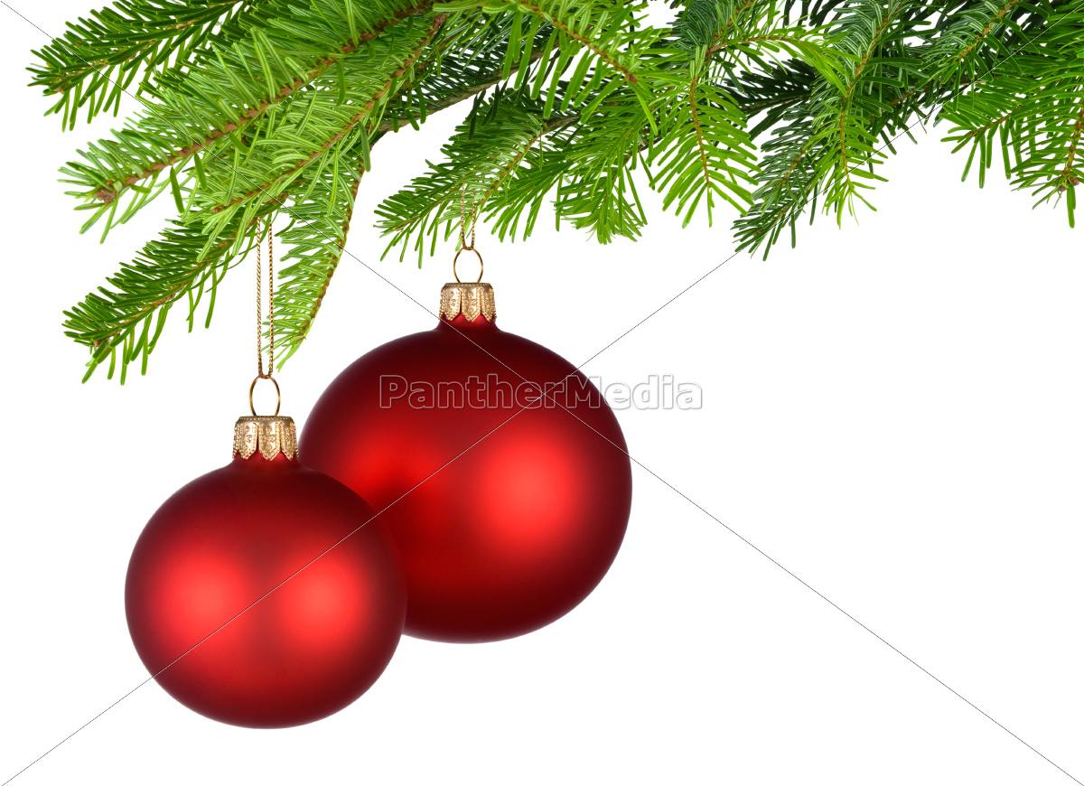 Dunkelrote Christbaumkugeln.Lizenzfreies Bild 10160815 Zwei Rote Christbaumkugeln Hangen Am Tannenzweig