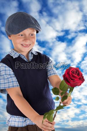 rote rose verschenken