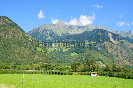 texel group in south tyrol with