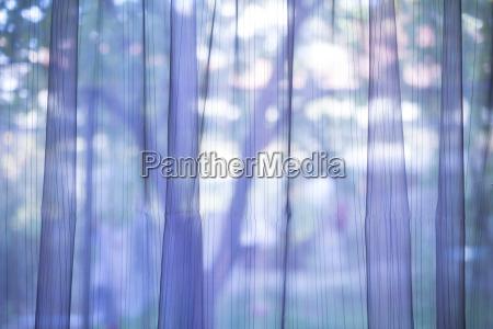 lila transparenten vorhang hintergrund
