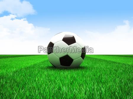soccer football field