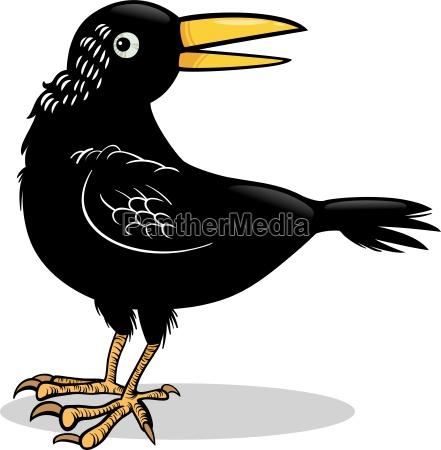 kraehe oder rabe vogel cartoon abbildung