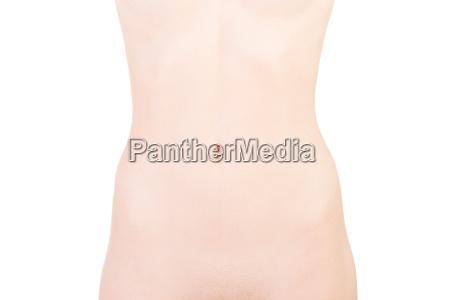 female naked body part belly