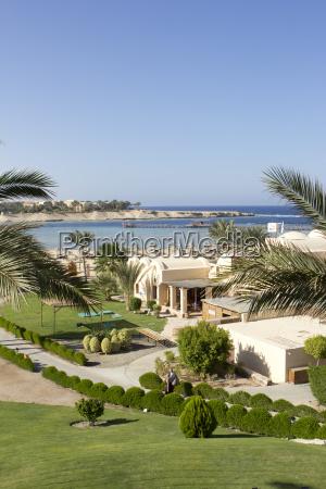 palmen am meer in AEgypten mit