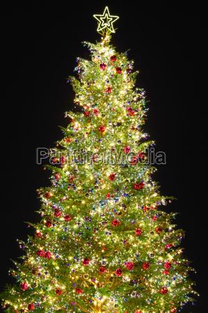 weihnachtsbaum, mit, dekoration - 10262955